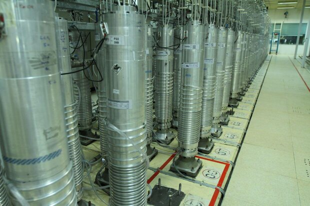 Iran's nuclear activities unstoppable: Rabiei