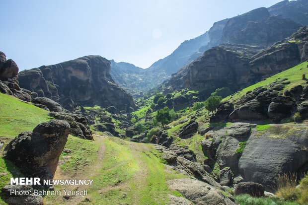 Makhmal Kūh (Velvet Mountain) in Lorestan
