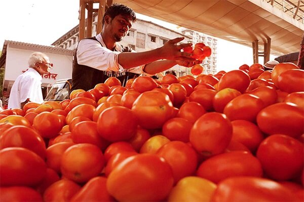 Pakistan considering importing tomatoes from Iran to curb rising prices: report