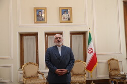 Zarif urges EU, E3 to support Iranian EB kids