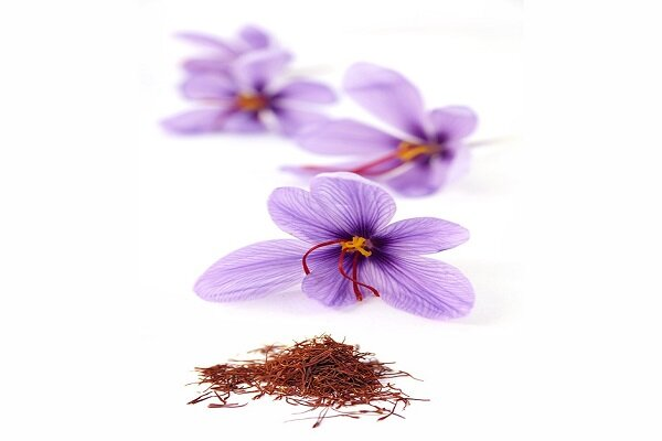 Iran's saffron in vital need of a brand name: official