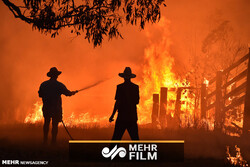 VIDEO: South Australia experiencing catastrophic bushfire conditions