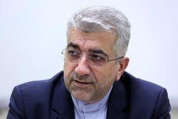 Iran keen on boosting trade with Eurasia: Ardakanian