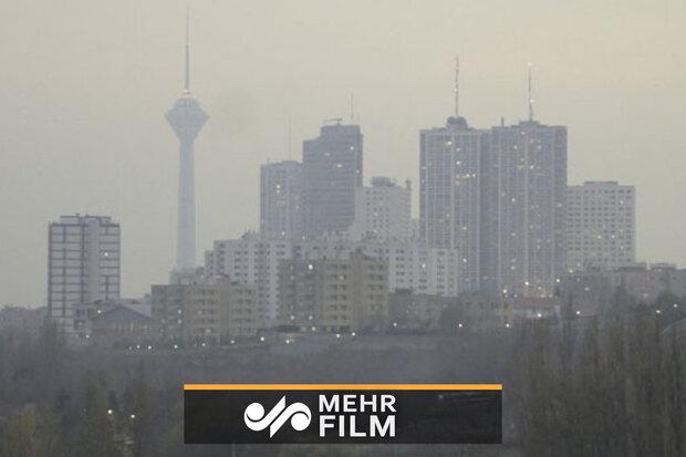آلودگی هوا در دستور کار معاونت حقوق عامه قرار گرفت