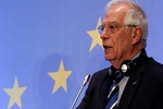 Unanimous support for JCPOA important to EU: Borrell