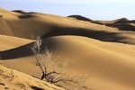Harturan; İran'ın Afrikası