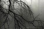 بارش برف و باران در محورهای مواصلاتی ۸ استان