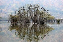 Estil Lagoon embracing autumn