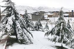 """هطول الثلج في مدينة """"دلفان""""/صور"""