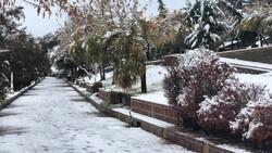 Snow blankets Delfan county in Lorestan province