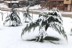 پیش بینی بارش شدید برف و باران در چهارمحال و بختیاری