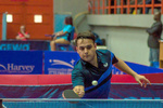 حضور با تاخیر ملیپوش تنیس روی میز ایران در لیگ مجارستان