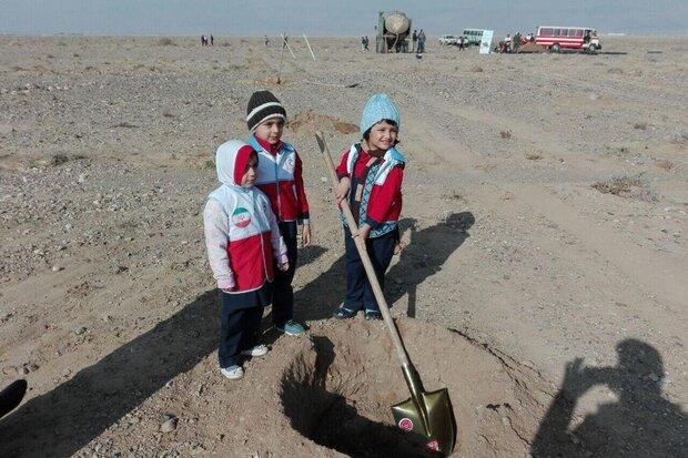 ۲۰۰هکتار نهالکاری در شهر سمنان انجام میشود