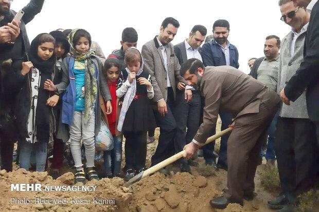 کاشت نهال در خوزستان