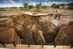 FAO calls for sustainable management of soil resources