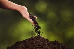 ئەمریکییەکان مردووەکانیان دەکەنەوە خاک