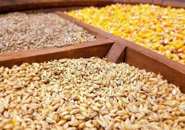 تامین ۵۰۰ هزارتن کنجاله سویا برای فصل پائیز