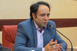 هیچ موردی از وجود قرص در کیک در استان قزوین گزارش نشده است