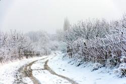 ارومیہ کے بالانج گاؤں میں برف کے شاندار مناظر