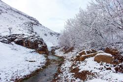 """طبيعة ثلجية في قرية """"بالانج"""" /صور"""