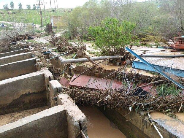 تسهیلات جدید به آبزیپروران سیلزده لرستان پرداخت میشود