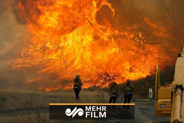 آسٹریلیا کے جنگل میں لگی آگ کی بلندی 70 میٹر تک پہنچ گئی