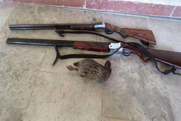 ۴ نفر شکارچی متخلف در ملکشاهی دستگیر شدند