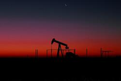 کاهش برآورد بانک آمریکایی از قیمت نفت
