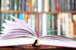 کتاب «تکاپو برای آزادی» نقد و بررسی میشود