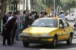قیمت هایی که در شیراز ثابت نماند/ معامله دو سر ناراضی