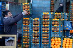 میادین میوه و تره بار تهران تعطیل نیستند