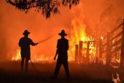 VIDEO: Emergency declared as bushfires rage on near Sydney