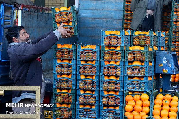 کرونا، مانع گرانی قیمت میوه شد/افزایش ۴۰ درصدی قیمت پیاز