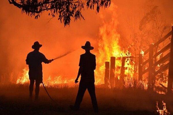 VIDEO: Emergency declared as bushfires rage on near Sydney