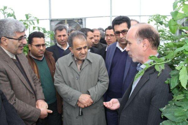 اراده سیاسی مقامات ایران و آذربایجان توسعه روابط دوستانه است