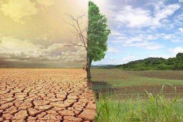 بیابان زدایی ۱۰۰ میلیون هکتار از اراضی کشور