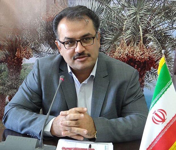 اشتغال ۹ هزار نفر با تکمیل پروژههای اقتصاد مقاومتی استان بوشهر