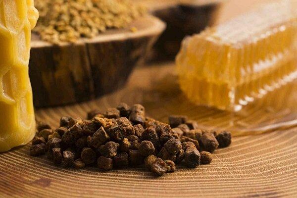 """شركة معرفية ايران تصنع من """"عكبر النحل"""" مضاداً حيوياً طبيعياً يعالج الأنفلوانزا"""