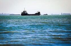 صید صنعتی در خلیج فارس ممنوع شد/ صیادان مسلح میشوند