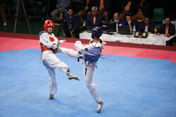 8th week of Taekwondo pro league