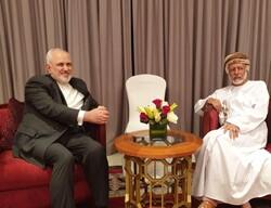 Zarif, bin Alawi held meeting in Muscat
