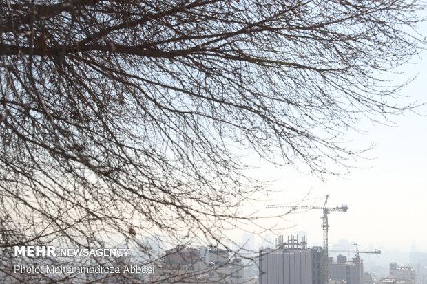 بهبود هوای تهران با وزش باد از فردا