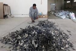 محموله بزرگ بالههای کوسه ماهیان در چابهار کشف شد