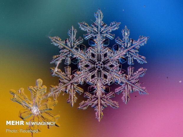 Muhteşem kar tanesi fotoğrafları
