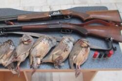 دستگیری ۳ شکارچی متخلف در کهگیلویه و بویراحمد