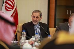 ولايتي: الهدف من إنشاء منطقة عازلة هو تقسيم سوريا