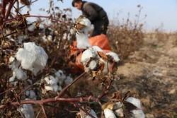 قاچاق پوشاک ۱۸۰۰ واحد نساجی را طی ۴ سال به تعطیلی کشاند