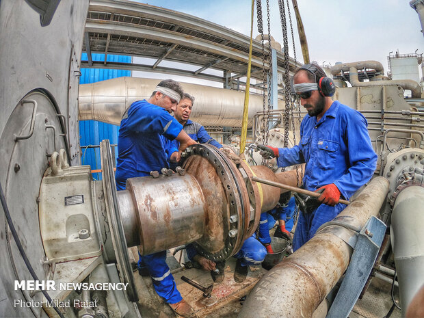 Petrochemical Industry Day