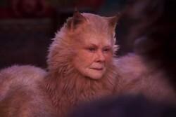 معرفی بدترینهای سال سینما/ «گربهها» تمشک طلایی را جارو کرد