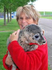 Dutch vet dedicates years to save Caspian seals in Iran